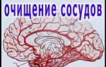 Лечение сосудов головного мозга народными методами