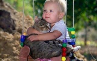 Какие животные не вызывают аллергию у детей