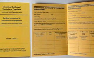 Сколько стоит прививка желтой