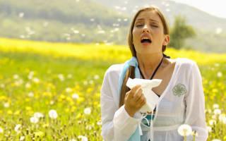 Лечение аллергии очищением крови