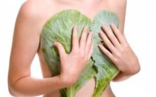 Фиброзно кистозная мастопатия лечение народными методами