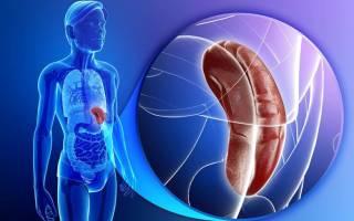 Селезенка симптомы заболевания лечение