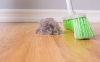 Аллергия строительной пыли лечение