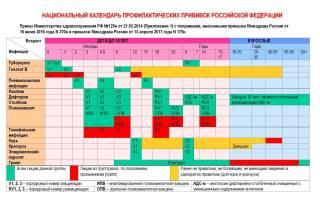 График прививок 3 лет россия