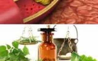 Атеросклероз сосудов шеи лечение народными средствами