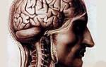 Симптомы лечение нервной системы