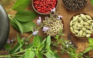 Профилактика и лечение печени народными средствами
